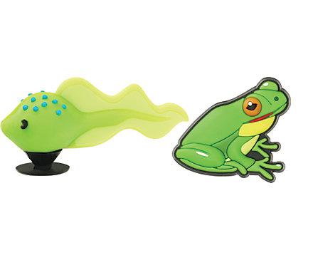 Tadpole & Frog 3D 2-pack